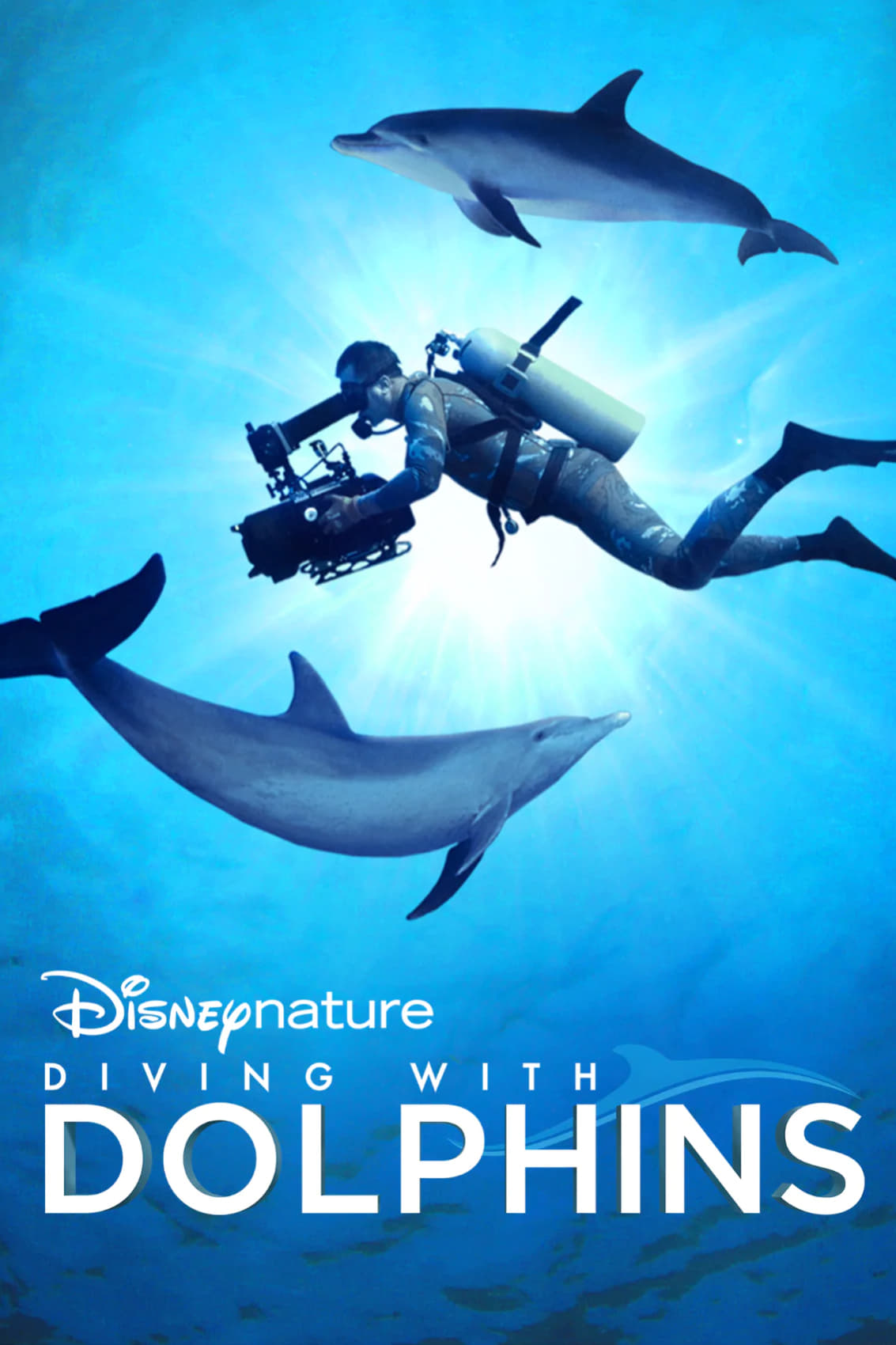 Diving with Dolphins (2020) Disney+ บรรยายไทย